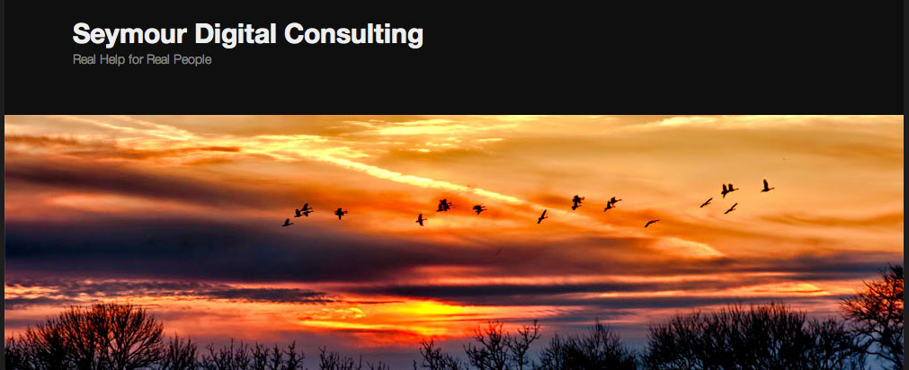 seymour consulting
